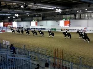 Cavalli a Milano 14/10/2011