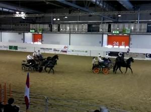 Cavalli a Milano 15/10/2011